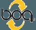 BOA lacing system